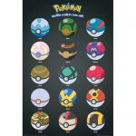 Accessoires Pokémon Pokémon Poster 15 Pokeball Différente !