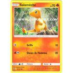 Produits Spéciaux Pokémon Carte Promo Foil Salamèche (SL3)
