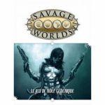 Enigme Jeu de Rôle Savage Worlds