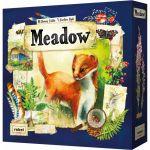 Stratégie Réflexion Meadow
