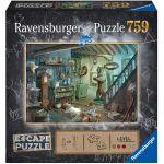 Escape Game Réflexion Escape Puzzle - Dans la cave de l'effroi